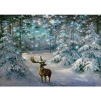 Amyline Christmas 5D Full Drill Snow Scene Diamond Painting,DIY Embroidery Rhinestone Pasted Cross Stitch Art Craft Home Wall Decor