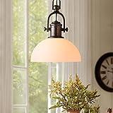%Lampe Retro rustikale Glas Einzelkopf Kronleuchter Esszimmer Wohnzimmer Studie Deckenleuchte (größe : 30 * 38.5cm)
