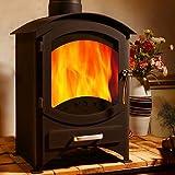 Estufa a leña de hierro fundido Astove, de 5,5kW, de combustibles múltiples, madera, carbón, de alta eficiencia, con certificado CE