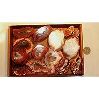 Preisvergleich für Achat, Achatdrusen, SET! 14 Stück, 825g, oft mit glänzenden Kristallanteilen, POLIERT und glänzend.