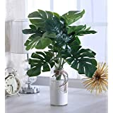 Fourwalls Miniature PVC Artificial Plant (54 cm, Green, AP 12 HD R353-1195)