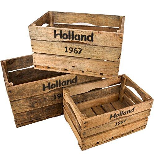 Estremamente Casse in legno Set di 3 Holland 67 immagine vintage-used Design  WC15