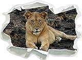 Leonessa appoggiato sul Pavimento, Formato Adesivo Carta da Parati 3D: 62x45 cm Decorazione della Parete 3D Wall Stickers Parete Decalcomanie