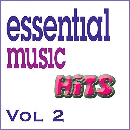 Essential Music Hits Vol 2