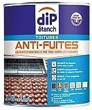 DIP ANTI-FUITES BLANC 0.75L
