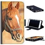 Hairyworm - Braunes Pferd mit weißem Blitz Sony Xperia X Compact Leder Klapphülle Etui Handy Tasche, Deckel mit Kartenfächern, Geldscheinfach und Magnetverschluss. Sony eXperia X Compact Fall