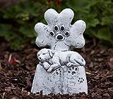 Grab joyas Lápida perro con huella, a las heladas y resistente a la intemperie, macizo de piedra