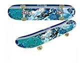 Beginner Skateboards