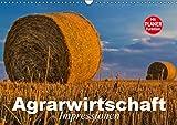 Agrarwirtschaft. Impressionen (Wandkalender 2019 DIN A3 quer): Agrar- und Landwirtschaft der Moderne (Geburtstagskalender, 14 Seiten ) (CALVENDO Natur)