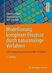Modellierung komplexer Prozesse durch naturanaloge Verfahren: Soft Computing und verwandte Techniken