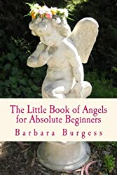 The Little Book of Angels for Absolute Beginners