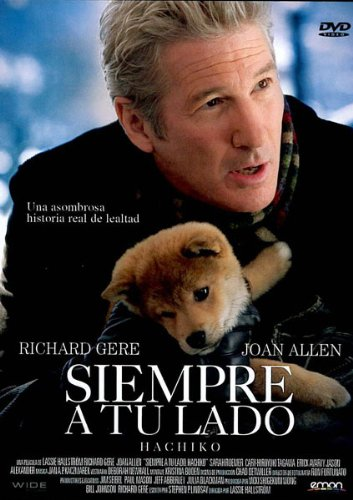 e9a6e4c5a33 Hachi-dog the best Amazon price in SaveMoney.es