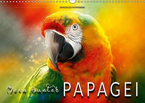Mein bunter Papagei (Wandkalender 2018 DIN A3 quer): Eindrucksvolle Bilder der exotischen Vögel. (Monatskalender, 14 Seiten ) (CALVENDO Tiere)
