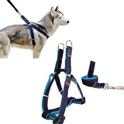 Arnés del Perro, Goodid Arnés con Correa Ajustable de Vaquero para Mascotas Perro,Gato,Cinturón de Pecho y Espalda,Hombro para Llevar Perros con Seguridad para Perro Pequeño,Mediano,Grande (Azul, S)