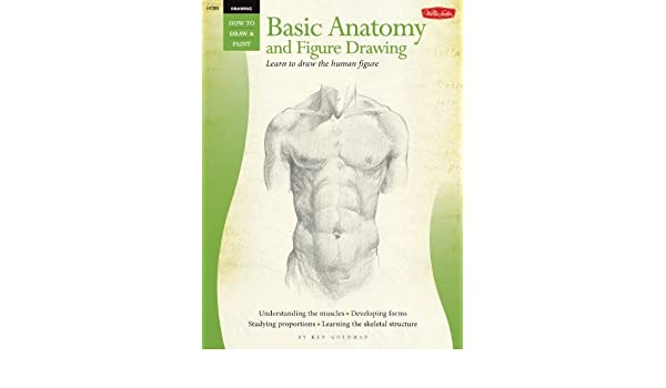 Buy Drawing: Basic Anatomy and Figure Drawing: Learn to draw the ...