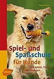 Spiel- und Spaßschule für Hunde: über 200 Spiele, Tricks und Übungen