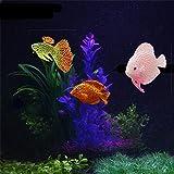 YUYOUG_Aquarium Yuyoug plastica nuoto in finta artificiale finto oro pesce acquario Decor Orname Gift, 3 Pack, taglia unica