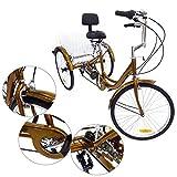 """Z&Y Dreirad für Erwachsene 6Speed 24"""" 3 Rad Senioren Shopping Fahrrad mit Korb Rot"""