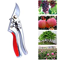 Potatura & # xFF0C; gwcleo in acciaio inox forbici per potatura da giardino pesanti Albero Clippers Trimmer versatile Sharp Albero Cesoie per prato e giardino