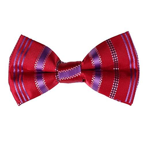 dbd7a08c-strisce-rosse-fidanzati-working-day-avvocati-polyster-pre-legato-papillon-tessuto-certifica