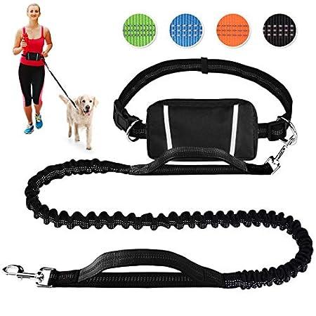 Pet Room Hundeleine Hands Free zum Laufen, Joggen, Wandern, Einziehbare Bungee-Hundeleine für mittelgroße bis große…