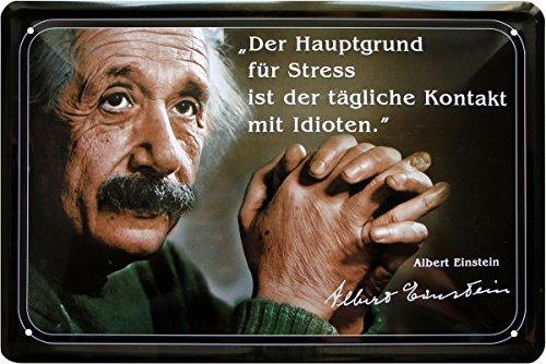 Albert Einstein - Hauptgrund für Stress sind Idioten 20x30 cm Blechschild 51
