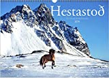 Hestastoð Kalender 2019 – A3 - Islandpferde in Island