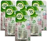 Airwick Nachfüllstecker für Steckdose, Duft: Magnolien- und Kirschblüten, 19 ml