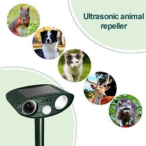 Swissinno Ultraschall SOLAR Tier Vertreiber Abwehr Marder Hunde Katzen Schreck