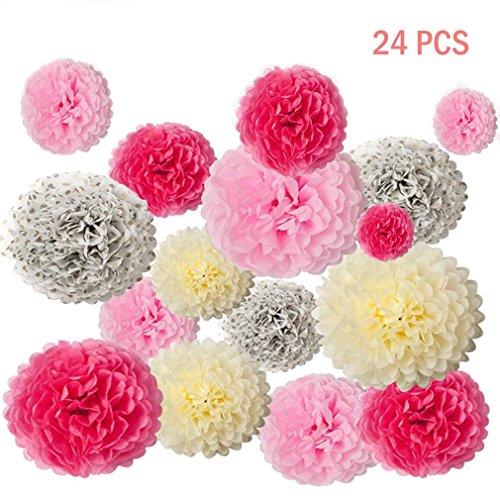 Abseed 24 Stücke Seidenpapier Pompons Blumenball Tissue Papier Pom Poms Blumen für Hochzeit Geburtstag Party Dekoration