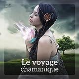 Musique chamanique thérapeutiques