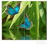 Wallario Herdabdeckplatte / Spritzschutz aus Glas, 2-teilig, 60x52cm, für Ceran- und Induktionsherde, Schmetterlinge in Reflektion -