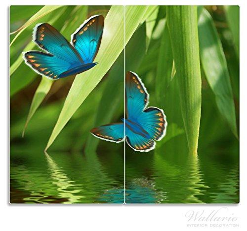 Wallario Herdabdeckplatte / Spritzschutz aus Glas, 2-teilig, 60x52cm, für Ceran- und Induktionsherde, Schmetterlinge in Reflektion