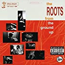 The Roots From The Ground Up