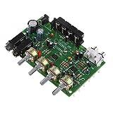 Homyl Digitale Endverstärkerbrett High Power Audio Sereo Verstärkermodul DC 12V Stereo AMP für DIY Lautsprecher Auto Fahrzeug Auto Computer-Audio-System