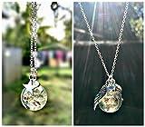 Die besten Schmuck Geschenke für alle Freund Stern Ketten - DOPPELPACK Silberner Stern UND Engelsflügel Löwenzahn Halskette mit Bewertungen