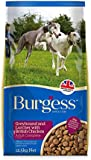 Reviews On Burgess Dry Food For Greyhounds