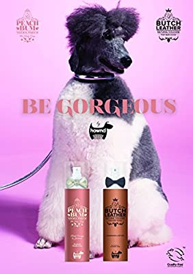 HOWND Butch Leather Cologne for Dogs from HOWND