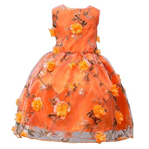 Prinzessin Kleid Mädchen Btruely Brautjungfern Kleid Blumen Abendkleid Hochzeit Cocktailkleid Partykleid Tüll Festzug Kinder Festzug Kleid Spitze Kleid (120, Orange) (Tüll Weiß Cute Tutu)