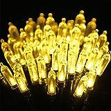 Qedertek Batterie Lichterkette, Weihnachtsbaum Lichterkette, 10M 100 LED Lichterkette 8 Modi mit Memory & Timing Funktion für Innen Außen Garten Party Weihnachten Deko (Warmweiß)