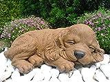 Steinfigur Hund schlafend, Gartenfigur Steinguss Tierfigur Braun Patina