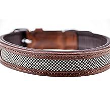 Schnüffelfreunde Collar de perro de cuero (L - 36-45cm, Tweed (de cuadros) /Marrón)