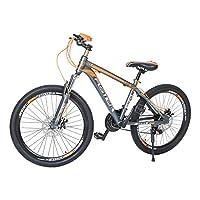 Aster L600 Mountain Bike - Orange Grey