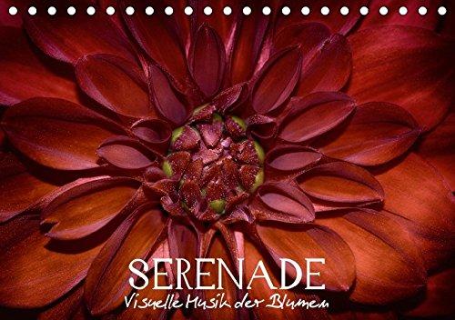 Serenade - Visuelle Musik der Blumen (Tischkalender 2017 DIN A5 quer): Blumenporträts - Makrofotografie der Blumenwelt in all ihren Facetten (Monatskalender, 14 Seiten) por Vronja Photon