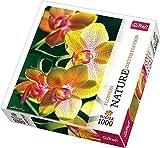 Trefl 10503 - Orchidee - Puzzle 1.000 Teile