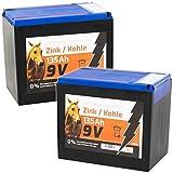 Voss.farming Lot de 2 x Batteries sèches Zinc Carbone 135 Ah 9V pour clôture électrique – Adaptée aux appareils solaires – Modèle Moyen