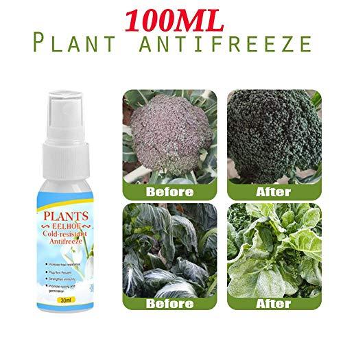 Dedeka protettivo per piante appassite liquido antigelo, resistente al freddo e resistente al freddo, 30 / 100ml
