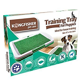 Kingfisher Training Tray for Puppies