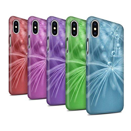 STUFF4 Matte Snap-On Hülle / Case für Apple iPhone X/10 / Pack (6 Pk) / Blumen Fee Tropfen Kollektion Pack (6 Pk)