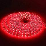 Tiras LED SMD5050 60 Led/m 220v (2 Metros Rojo)...